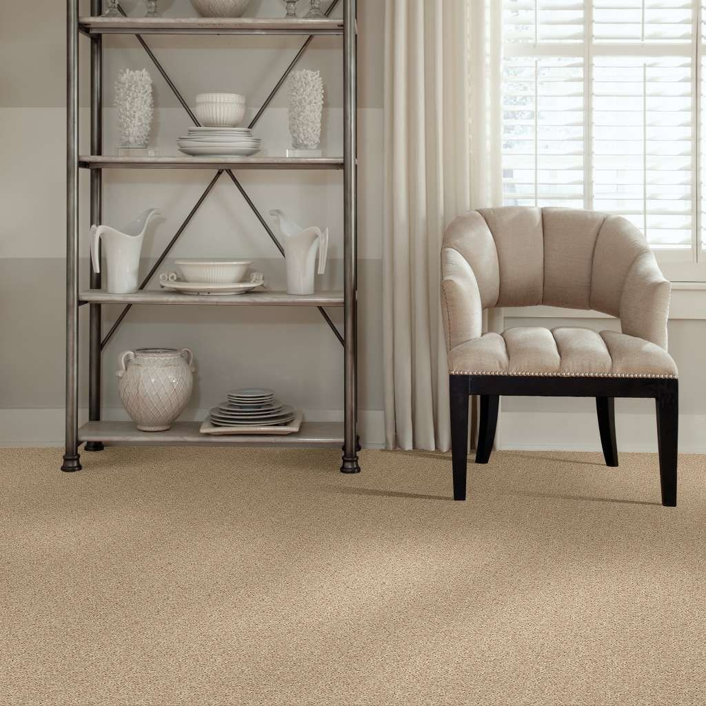 Carpet Flooring Designs Patterns | Color Interiors