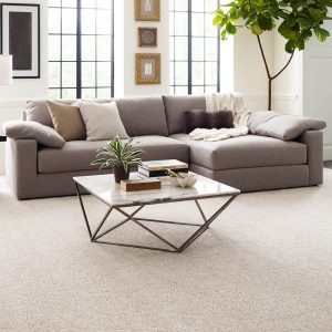 Comfortable carpet for living room | Color Interiors