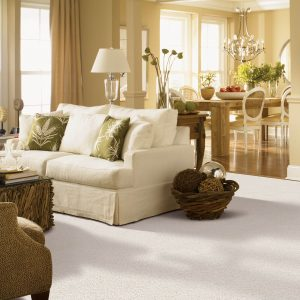 Gentle Approach of carpet | Color Interiors
