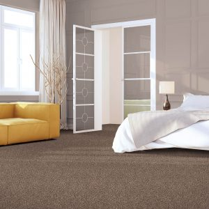 Impressive selection of Carpet | Color Interiors