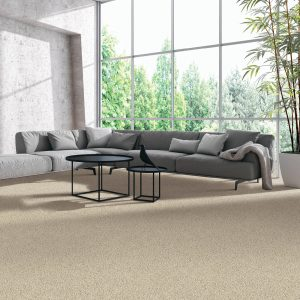 Modern living room flooring | Color Interiors