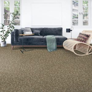 Carpet Flooring for living room | Color Interiors