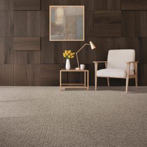 Carpet Flooring | Color Interiors